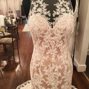 Celebration Bridal